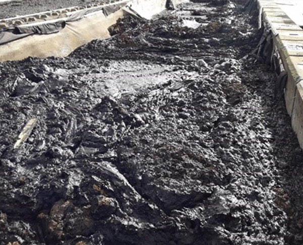 sludge-soil